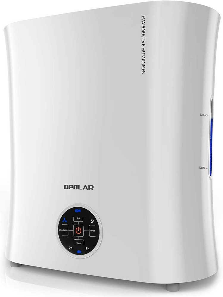 OPOLAR EV01 Air Purifier and Humidifier Combo